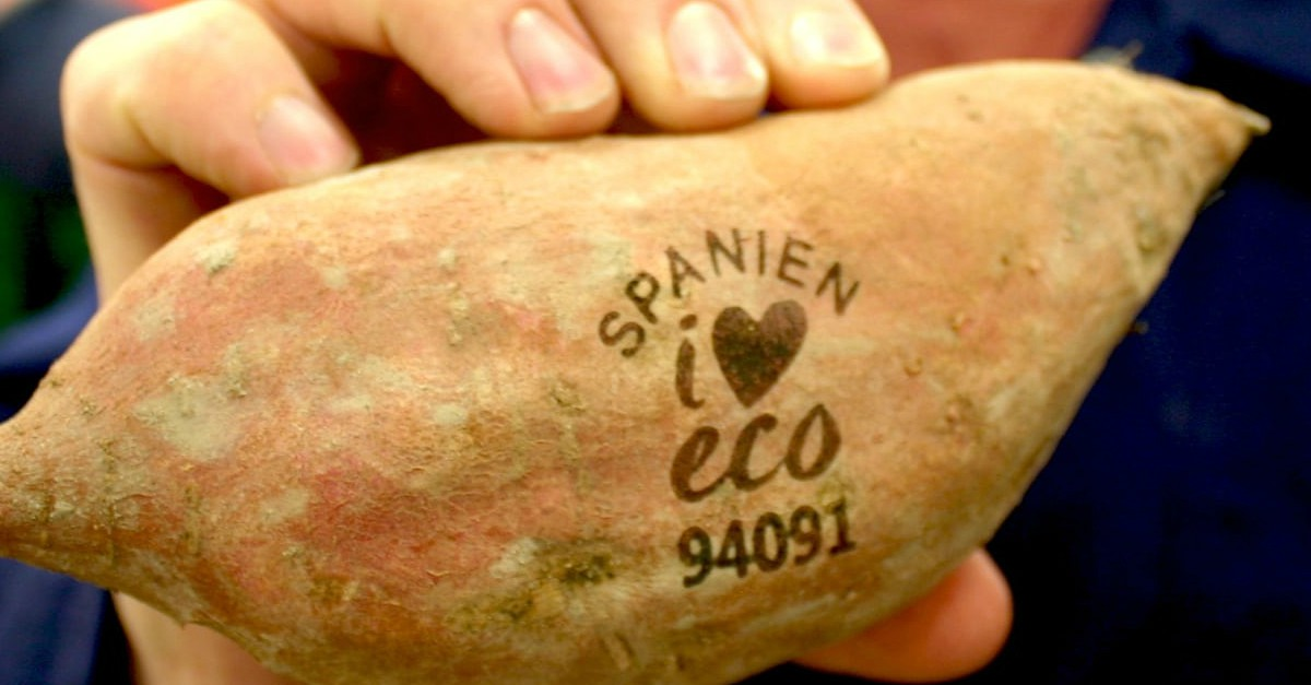core-issues-fruit-laser-printing-spanien-eco