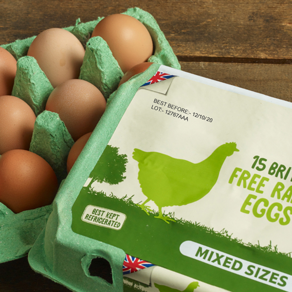 Industry-Food-Thumbnail-Eggs-Box